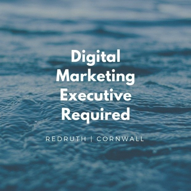 Digital Marketing Executive Required At Furniture World