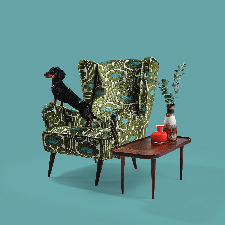 Shop Orla Kiely Chairs